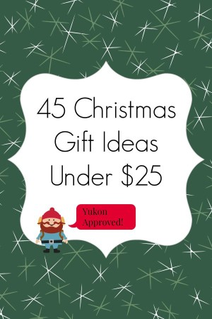 45 Christmas Gift Ideas Under $25