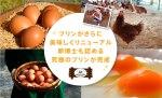 9月16日(水)と、23日(水)に大丸心斎橋店の地下1階で催事販売を行います。
