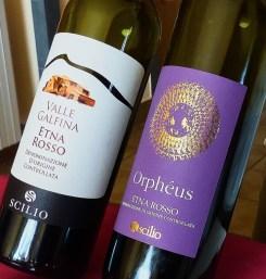 Scilio-red-wines