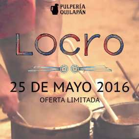 loco_2016_web