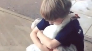 Boy Hugs Chicken: This 15 Second Video Will Make Your Day.