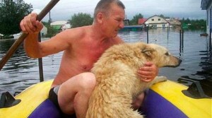 A Loving Mutt Proves His Loyalty When Disaster Strikes. This Is Beautiful.