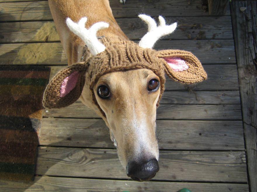 Deer Antler Snood
