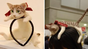 Wearing A Kitten On Your Head Is Now A Fashion Craze, And It's Surprisingly Adorable