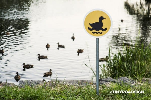 55b943e40c0fc - Hedgehogs, Cats, And Ducks Get Own Tiny Crosswalks In Lithuanian Town Where All Creatures Are Equal