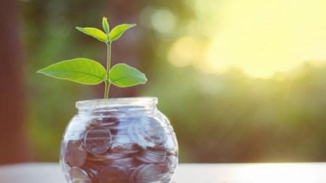 Startup-funding-750x500