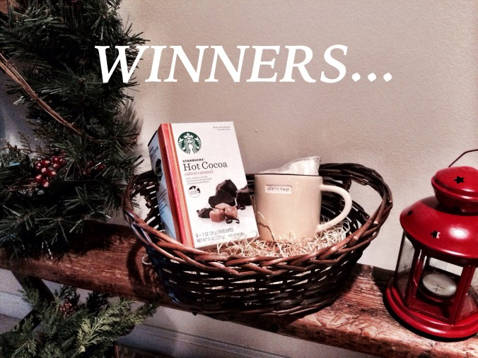 holiday giveaway winners
