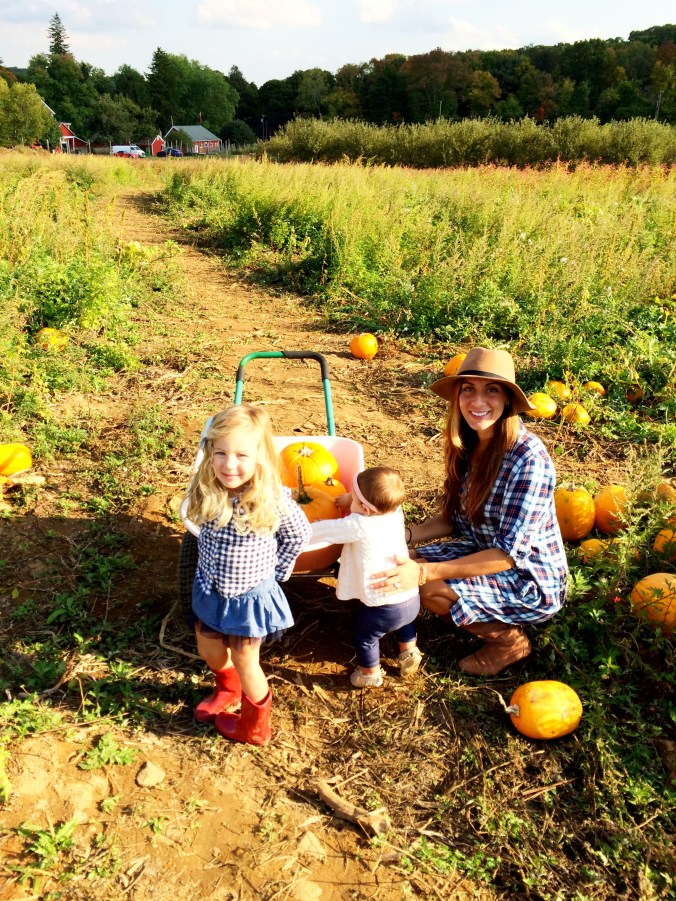 pumpkin picking 4