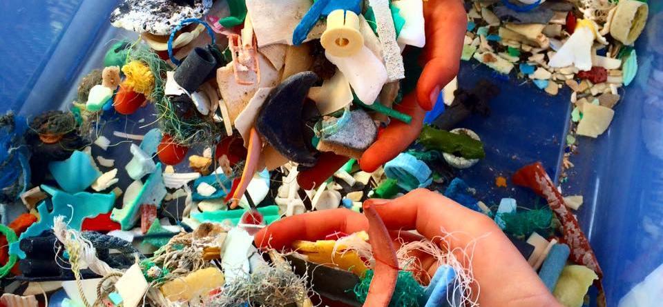 Marine Plastics Aren't Cool