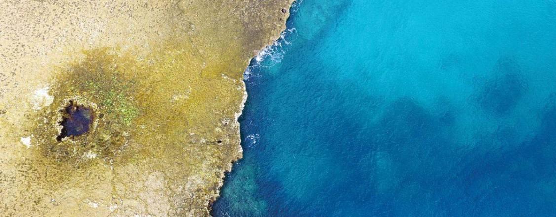 Sharks Cove Image Winner of HAWAII Magazine Photo Contest