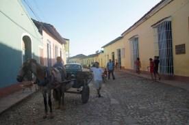 puriy-reiseblog-trinidad-8