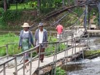 Nationalpark Ranomafana