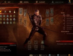 The Witcher 3 Image du jeu