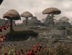 Skywind Image du jeu