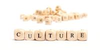 culture1 copy