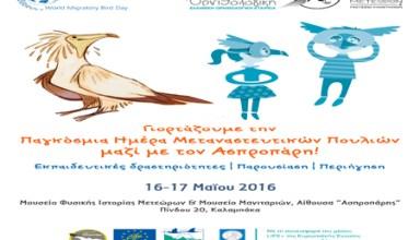 poster_MBD_Meteora copy