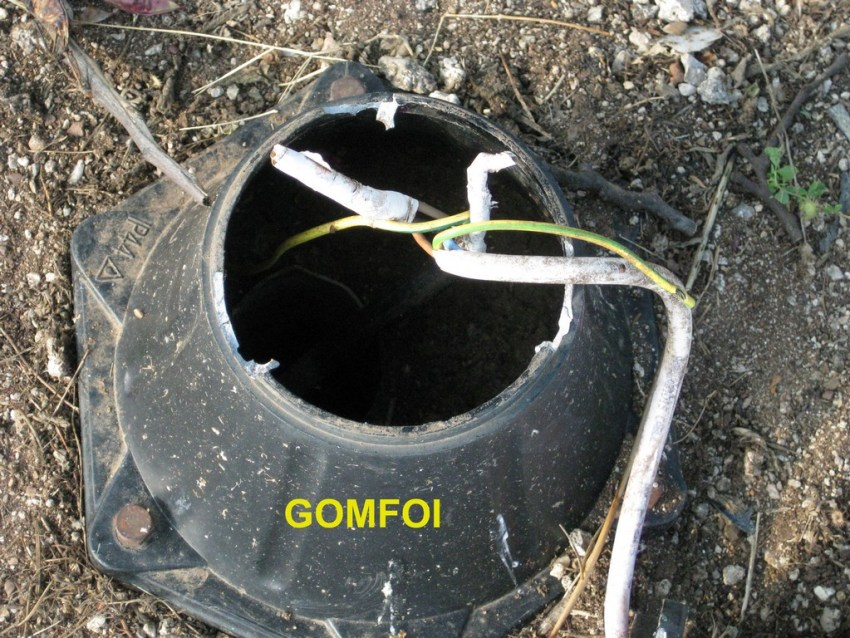 gOMFOI (6) copy