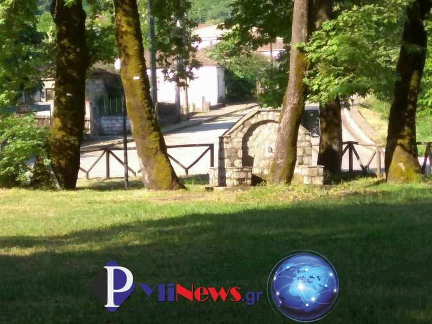 Pialeia 1