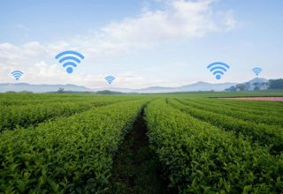 smart-farming-wifi-xorafia-696x464