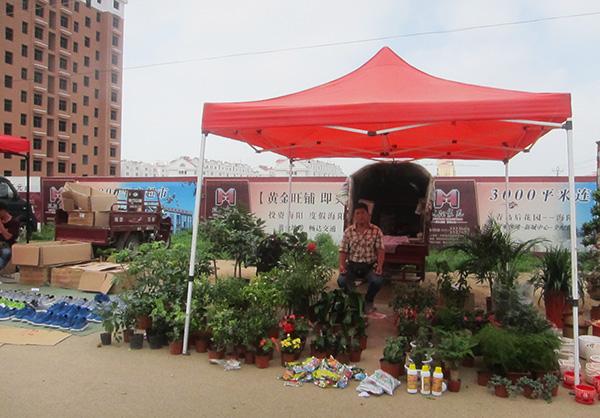 Haiyang veggie market Qingdao roadtrip