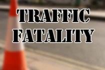 traffic fatality 01
