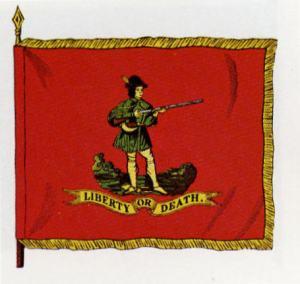 1st virginia flag