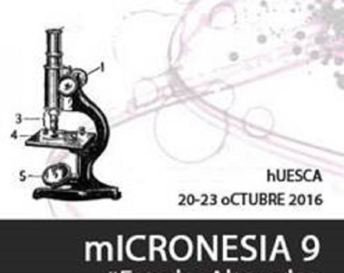 micronesia huesca