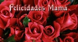 Concierto del día de las madres del LACCQ este domingo 31 de mayo