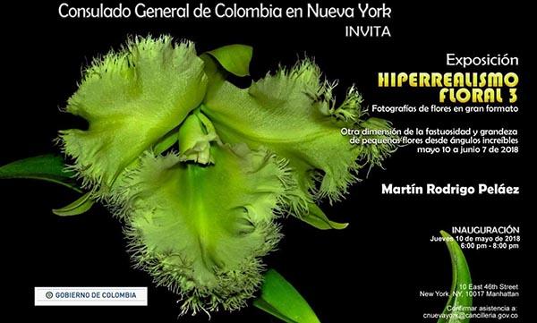 Exhibición de fotos de flores en Consulado de Colombia NY