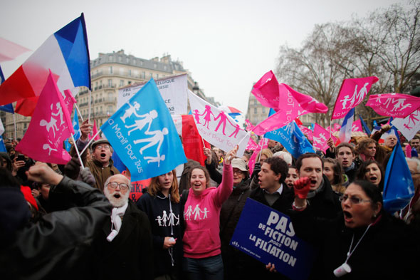 French same-sex marriage protest