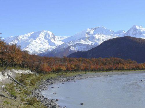 Bosques patagónicos en el Parque Nacional Los Glaciares de Argentina