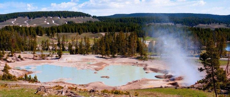 La naturaleza está en plena ebullición en verano en Yellowstone, sin duda la mejor época para visitar el Parque Nacional