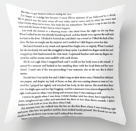 "A throw pillow with the text to the erotic short story, ""I Didn't Bother With Her Dress"" from Quickies in New York."
