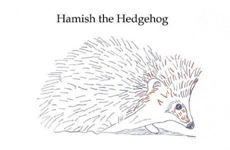 Freebie: Hamish the Hedgehog embroidery pattern