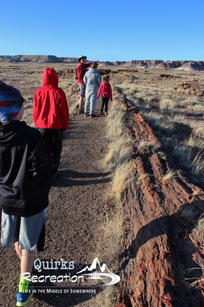 Hikers on the Long Log Trail in Petrified Forest National Park