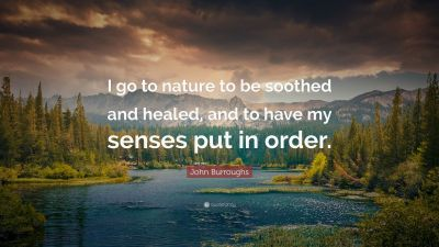 Nature Quotes (32 wallpapers) - Quotefancy