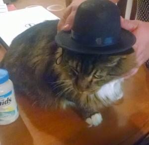hat - alexi