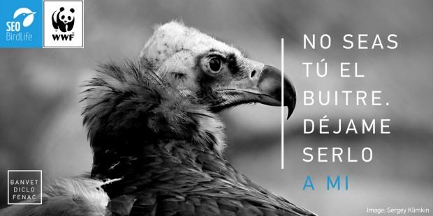 """Las ONG ecologistas lanzan la campaña """"No seas buitre"""" para evitar la muerte masiva de buitres"""