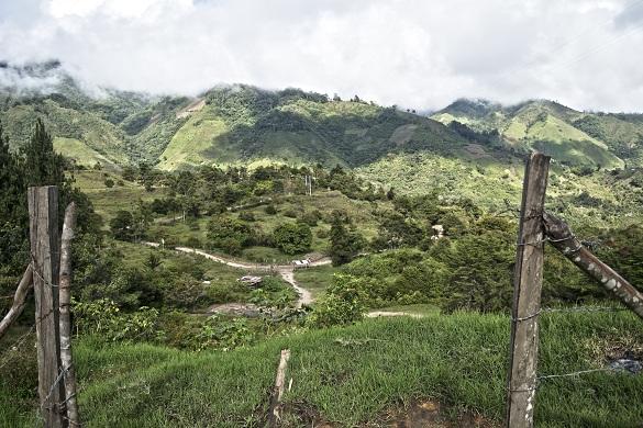 3. Desalojo a comunidades indígenas en el sur del Tolima