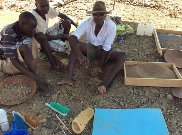 Descubren cráneo de simio de 13 millones de años de antigüedad