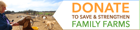 RAFI-Header-Ad-Donate_Oct2014