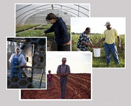 FARMERPICMONTAGE1-300x266