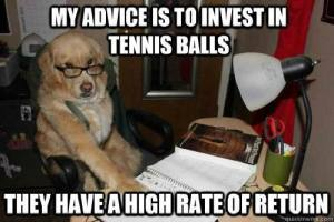 Finance Dog Meme suggests buying tennis balls