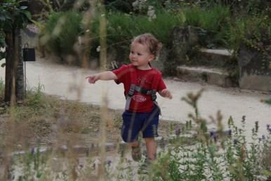 Au jardin du Prieuré de Locmaria de Quimper