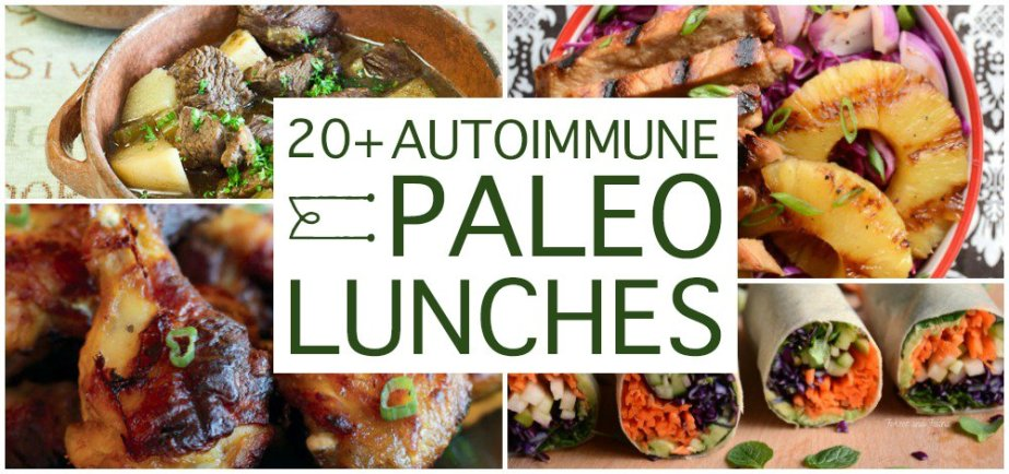 Over 20 Delicious AIP Lunches