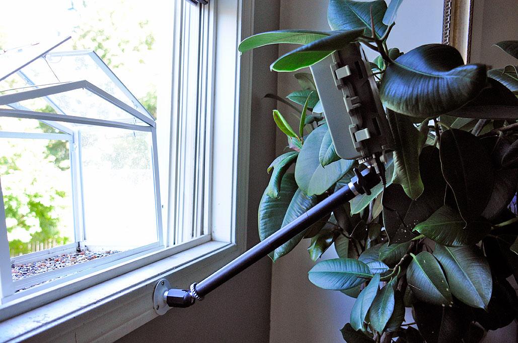 birdcam pro inthewild rainydaymagazine