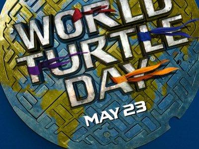 Celebrate world turtle day tmnt2