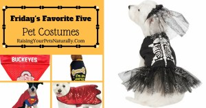 Friday's Favorite Five: Safe and Fun Pet Halloween Costumes