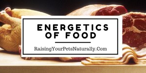 Food Therapy: Energetics of Food