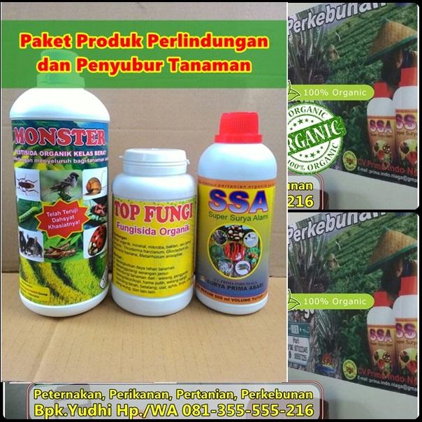 jual-pupuk-organik-cair-ssa-harga-poc-ssa-distributor-pupuk-tanaman-buah-pupuk-organik-penguat-akar-jual-pupuk-perangsang-buah-pupuk-penguat-batang-pupuk-pembasmi-hama